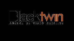 Logo de la société Blacktwin
