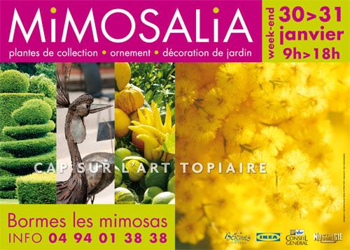 Mimosalia 2010 les 30 et 31 janvier 2010