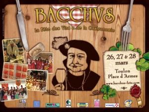 Fête du vin et de la gastronomie Bacchus 2010