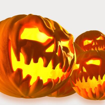 Fêter Halloween à Toulon